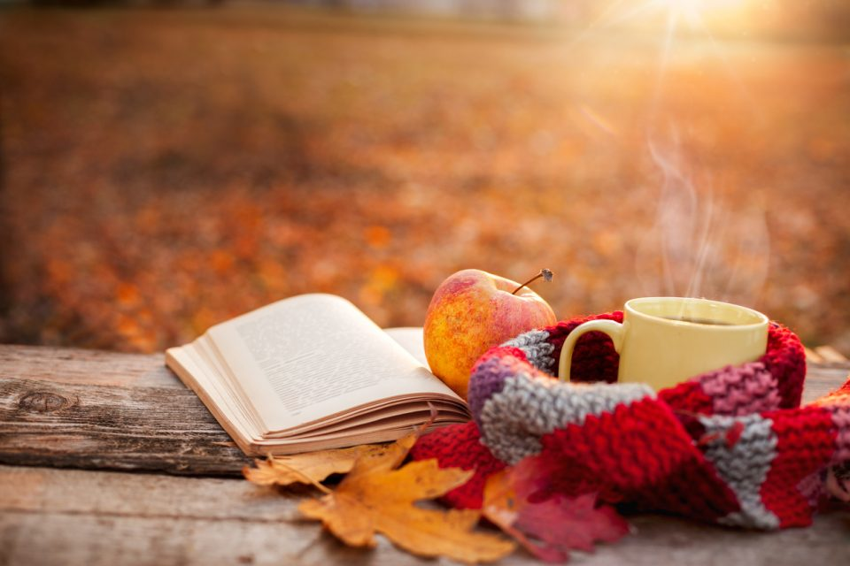 Tea mug with warm scarf open book and apple for fall festivities checklist